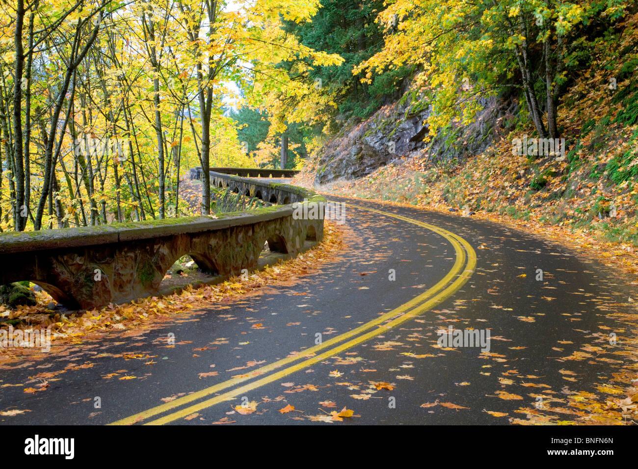 Columbia River Gorge National Scenic Area Road. Oregon Photo Stock