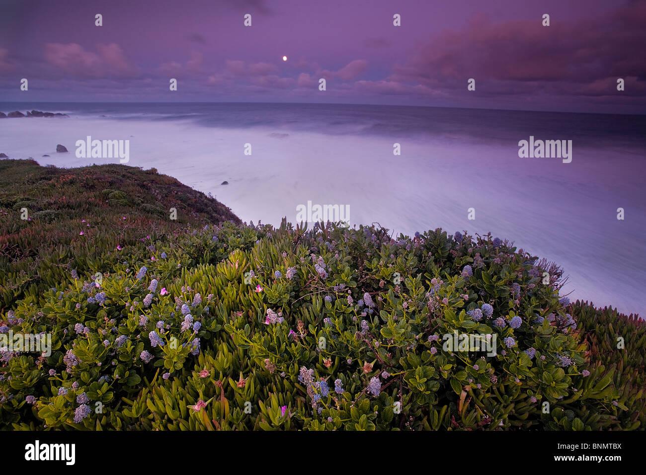 Côte de Big Sur, Californie, USA. Photo Stock