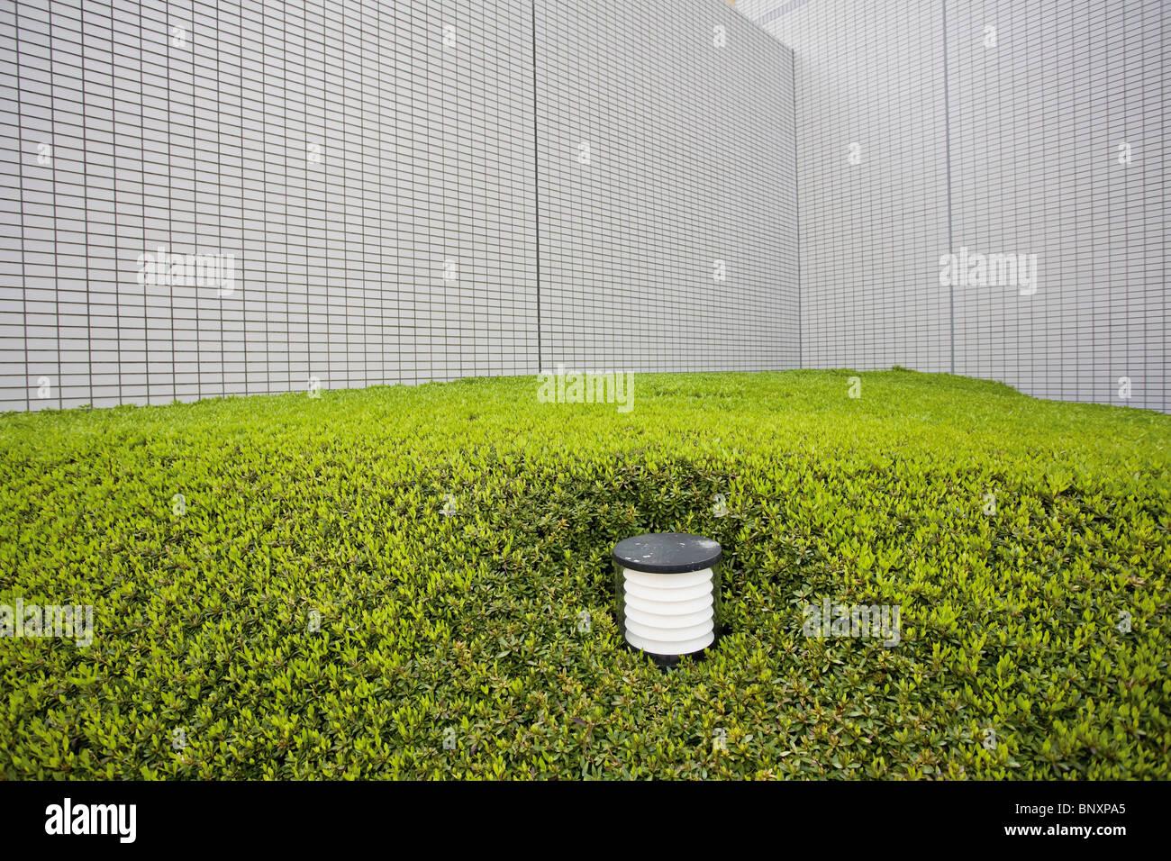 Éclairage terrain entouré de jardins d'arbustes Photo Stock