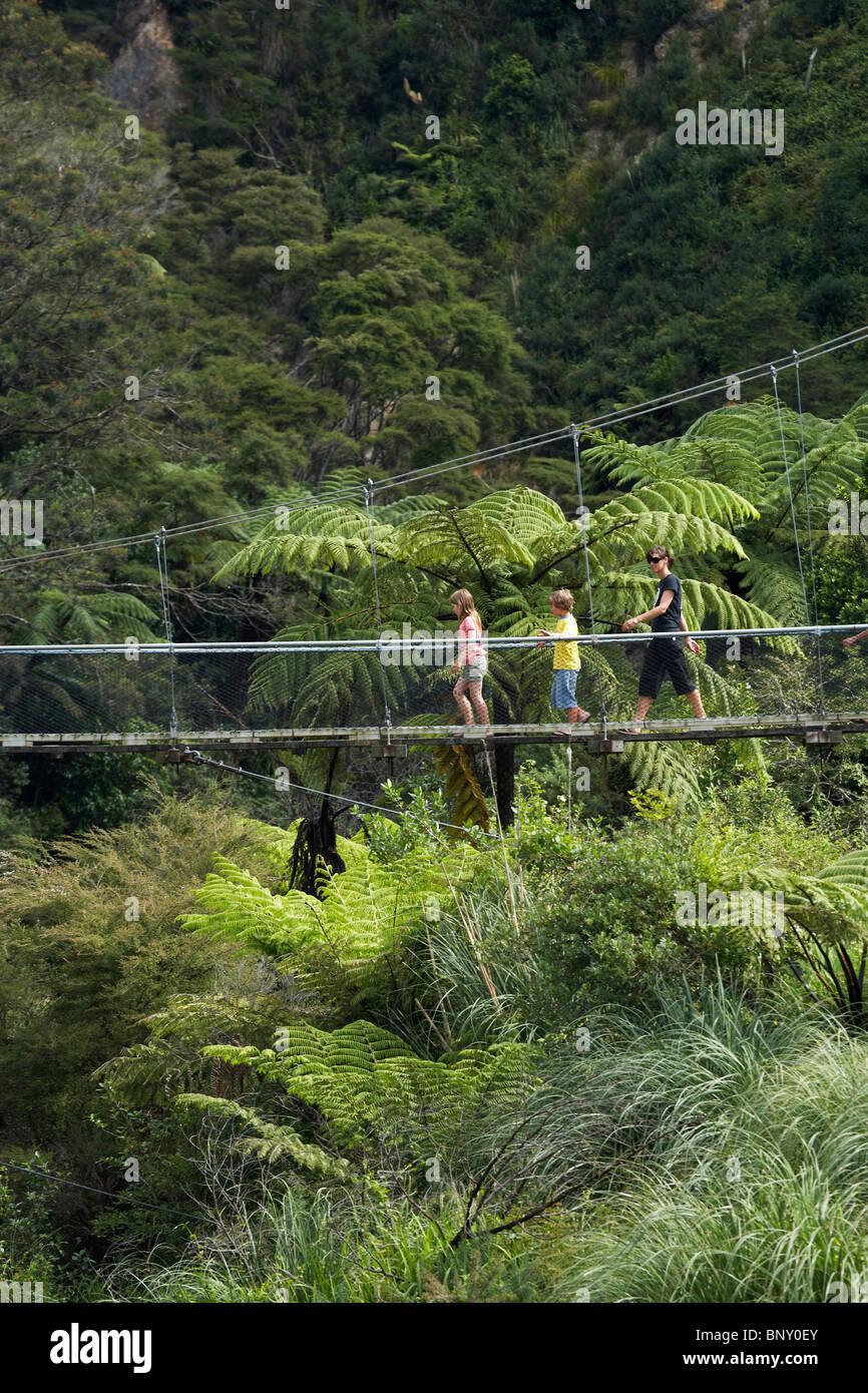 Swingbridge, Waitawheta Karangahake River, Gorge, près de Paeroa, Waikato, Nouvelle-Zélande, île Photo Stock