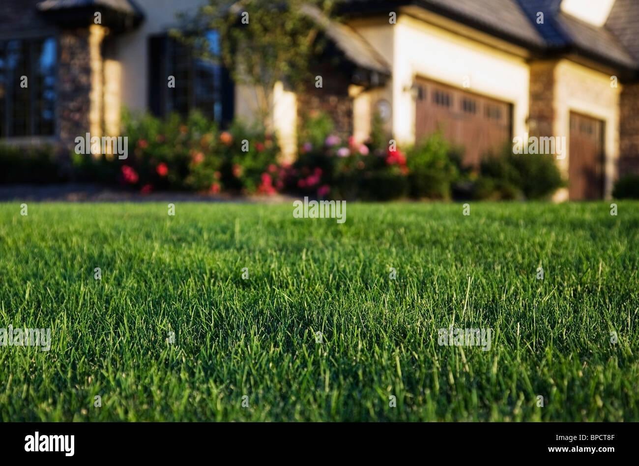 St. albert, Alberta, Canada; une succession accueil et pelouse Photo Stock