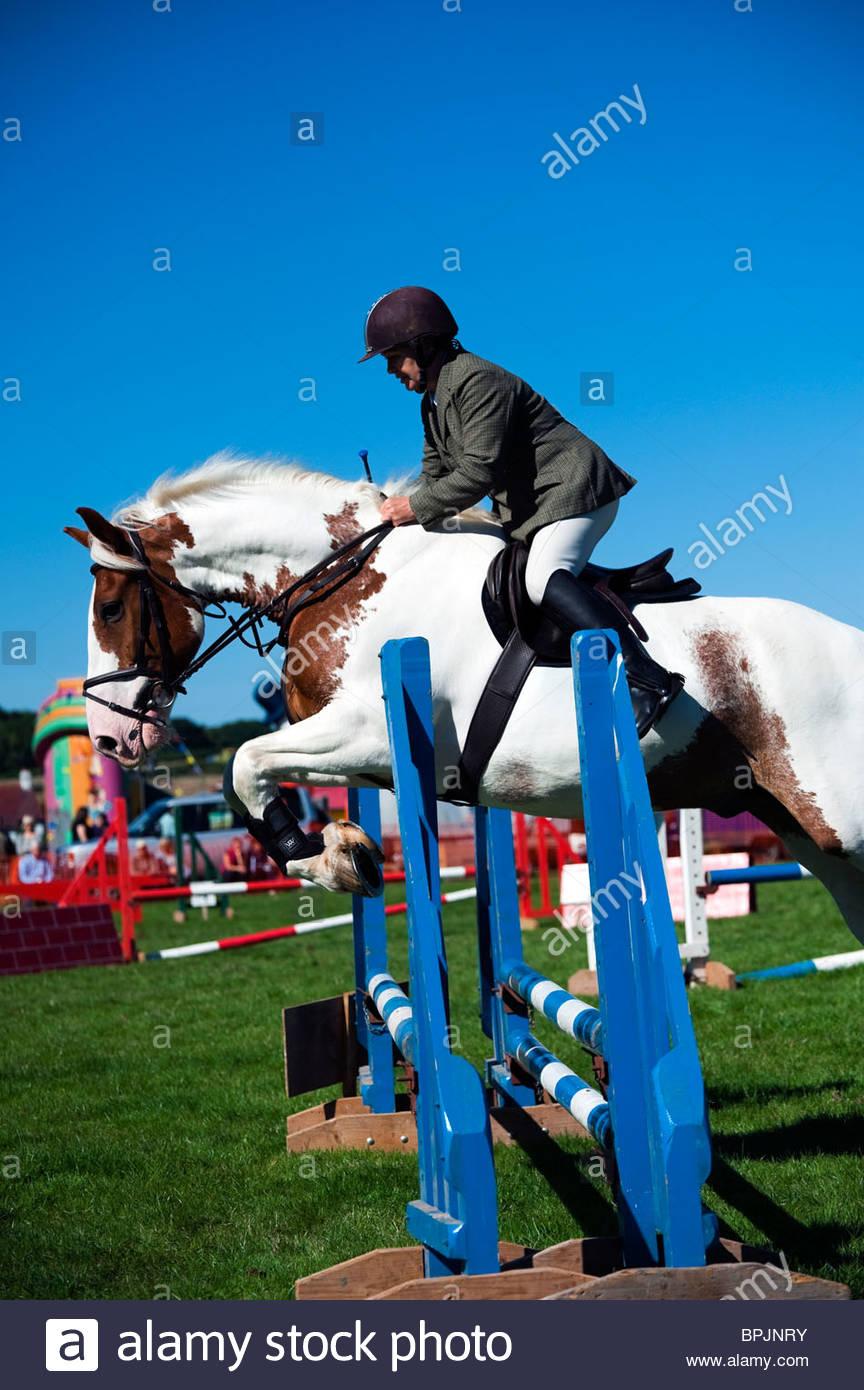 Compétition cso à Lea Show, Herefordshire, Angleterre. Woman riding a cheval pie sautant une clôture Photo Stock