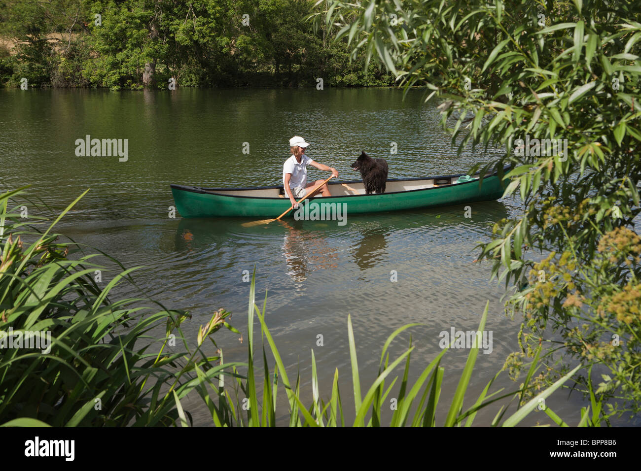 Femme en canoë avec chien Banque D'Images