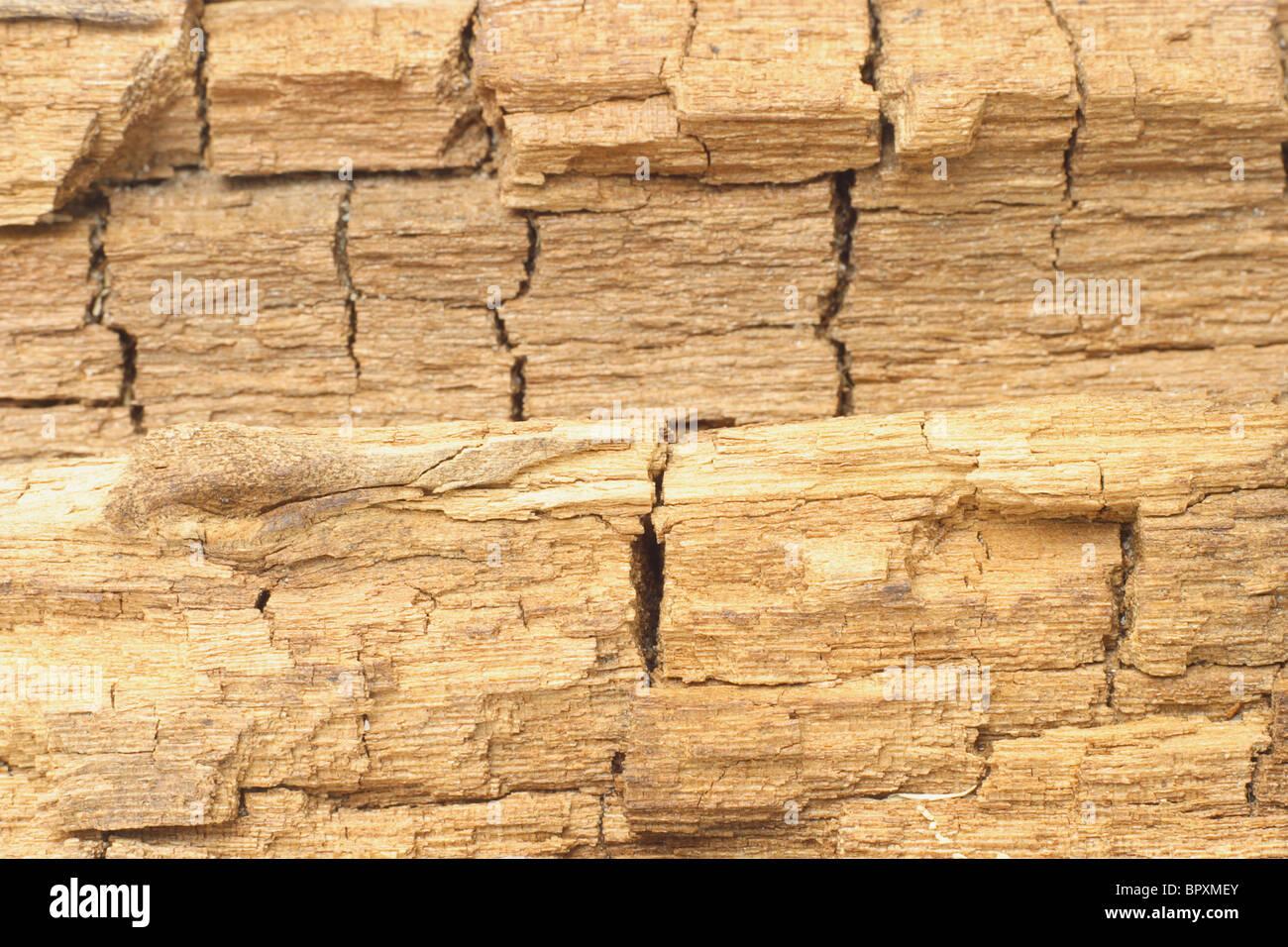 Surface en bois patiné et fissurée texture background Photo Stock