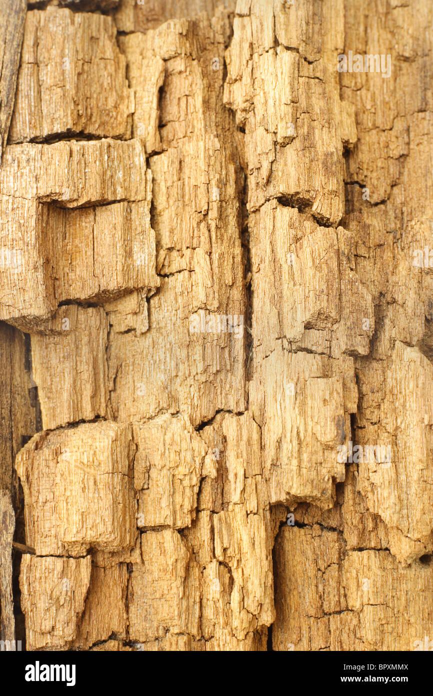 Arrière-plan de altérés et la texture de la surface en bois fissuré Photo Stock