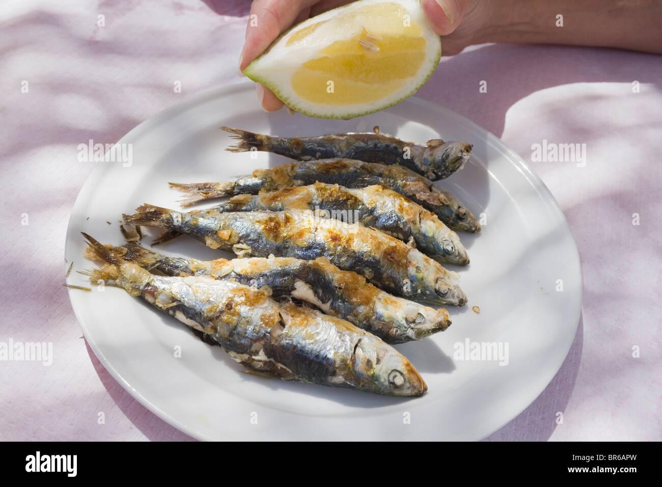 Assiette de sardines grillées fraîchement. Photo Stock