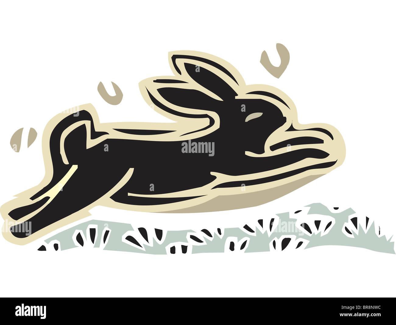 Dessin D Un Lapin Banque D Images Photo Stock 31540248 Alamy