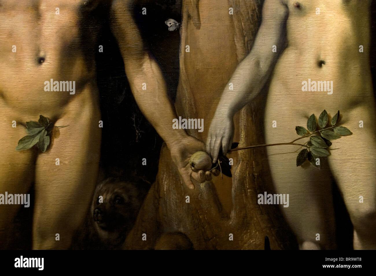 Cornelis van Haarlem la chute de l'homme Adam Eve Jardin d'Eden apple tree Museum Pays-Bas Photo Stock