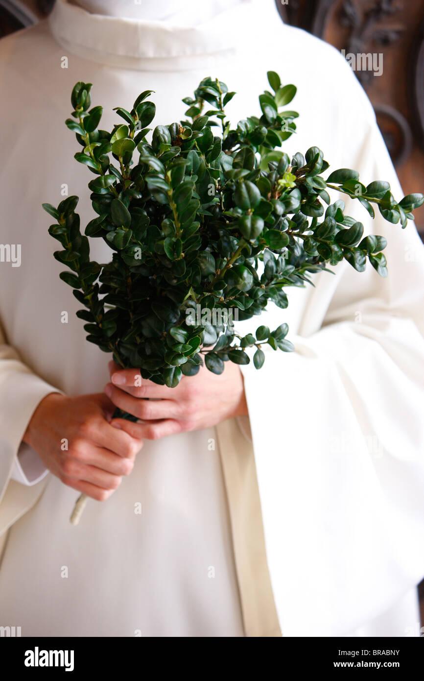 La direction générale de buis utilisée pour la bénédiction, Paris, France, Europe Photo Stock