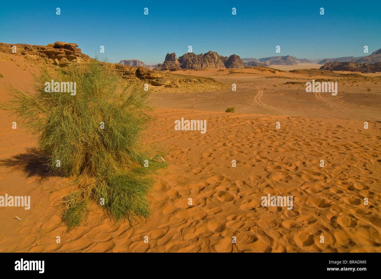 Les superbes paysages du désert de Wadi Rum, Jordanie, Moyen-Orient Photo Stock