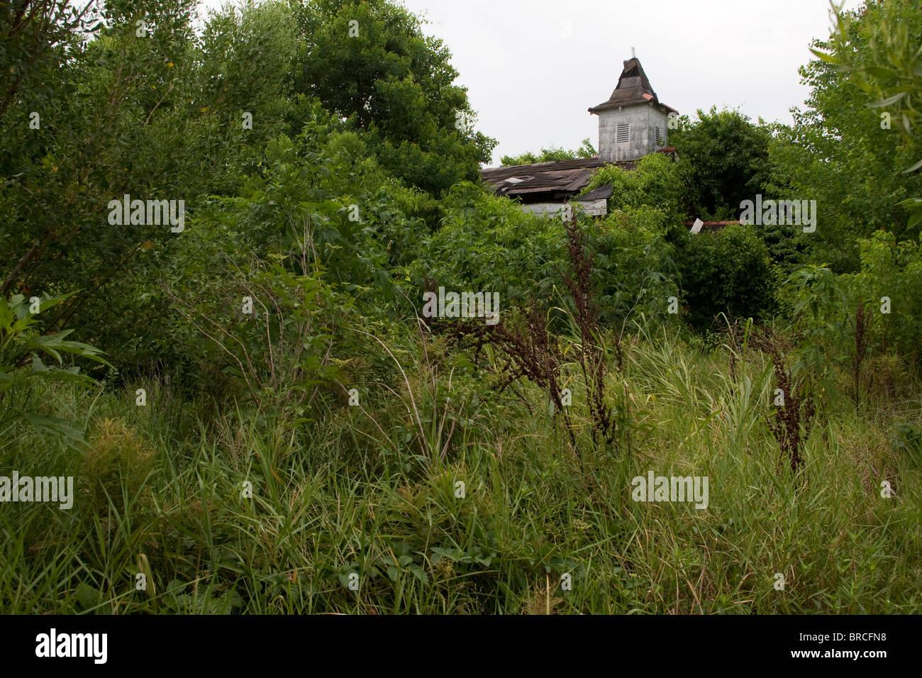 La pauvreté et la dégradation des plaies abandonnées de vastes régions de la Nouvelle Orléans. Photo Stock