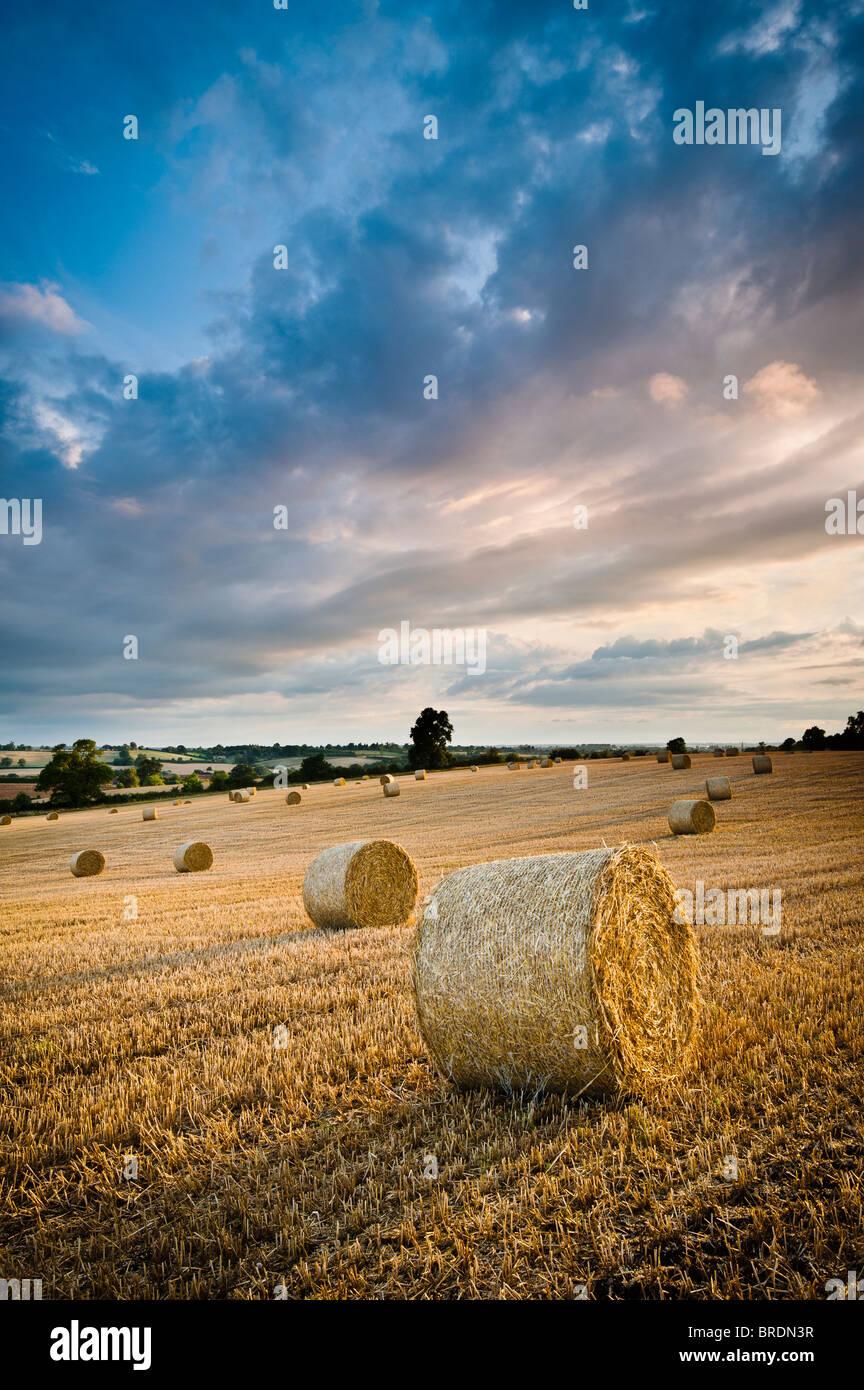 Hay bails et de chaume dans un champ au coucher du soleil, Warwickshire, England, UK Photo Stock
