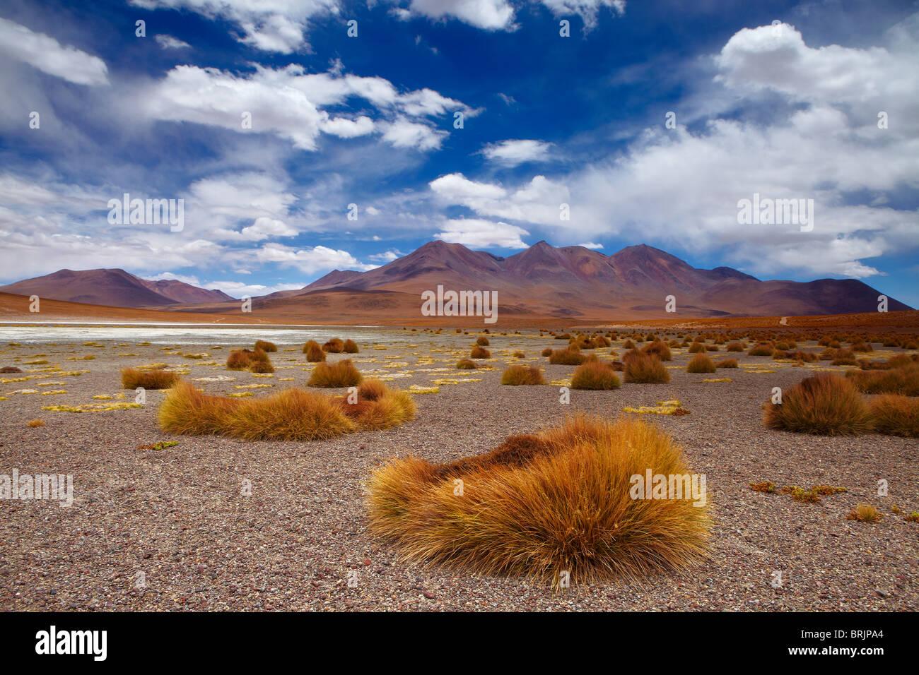 La région reculée de high desert, et les volcans de l'altiplano bolivien, près de Tapaquilcha Photo Stock