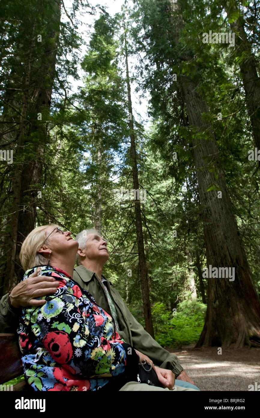 Couple de retraités assis sous des arbres géants dans le Montana. Photo Stock