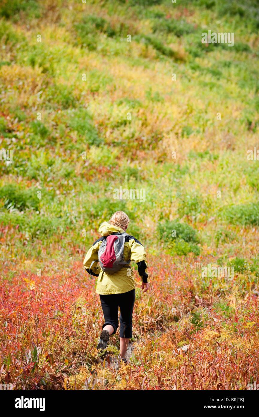 Une femme passe à travers un champ coloré sur Mt. Janie, près de Pleasant Grove, UT. Photo Stock