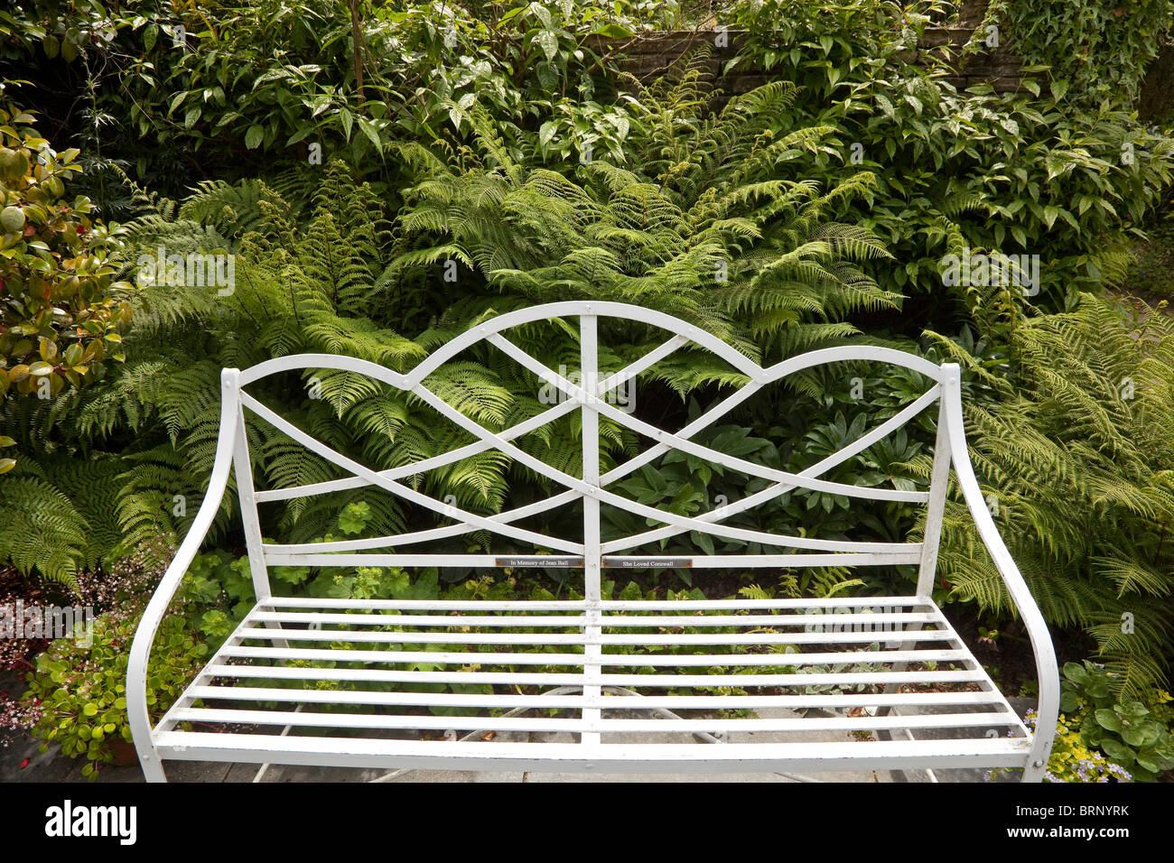 Banc De Jardin Orné De Métal Blanc Accueillant Avec Un Fond Fern