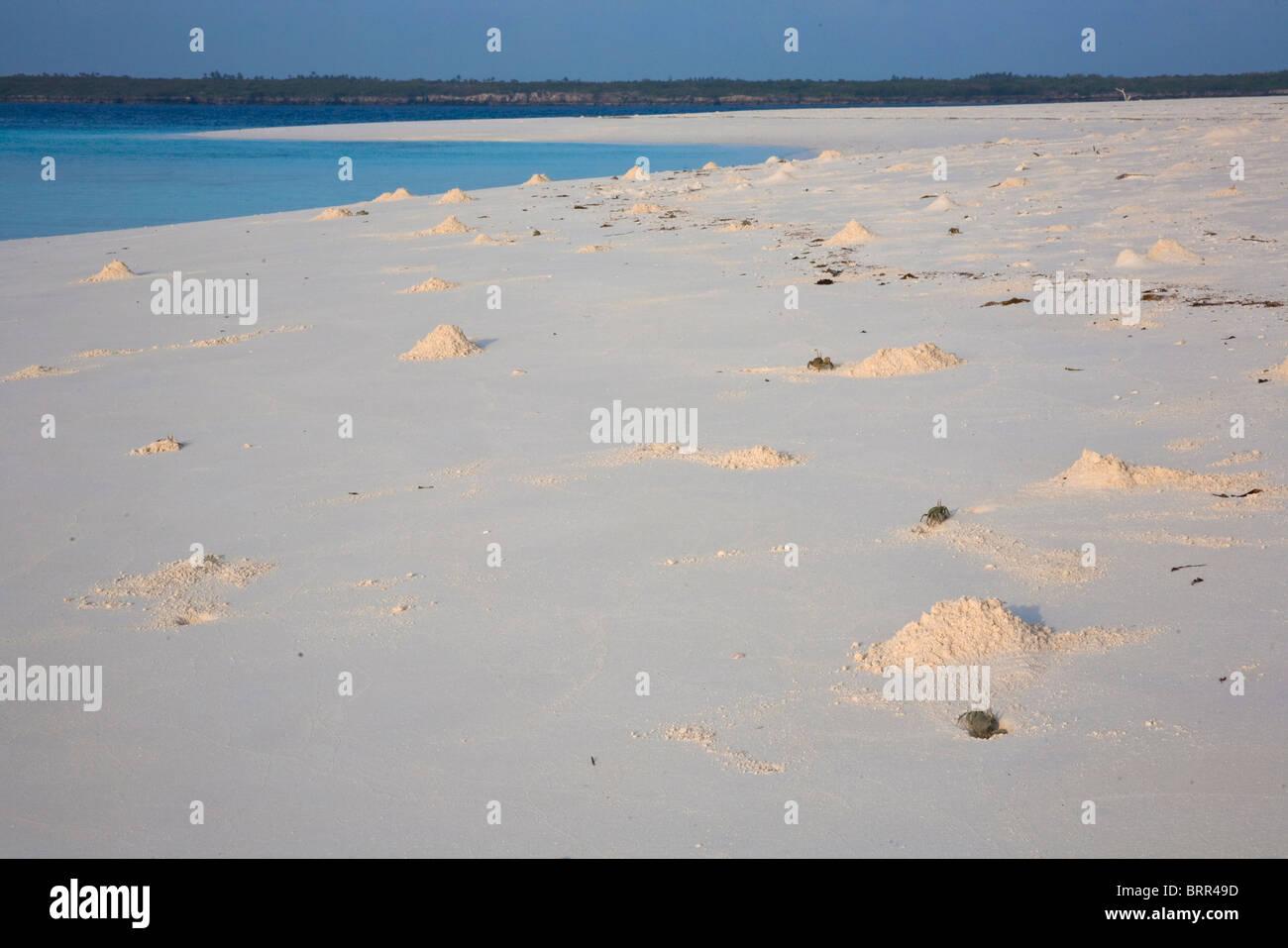 Scène de plage de l'Île déserte des trous de crabe Photo Stock