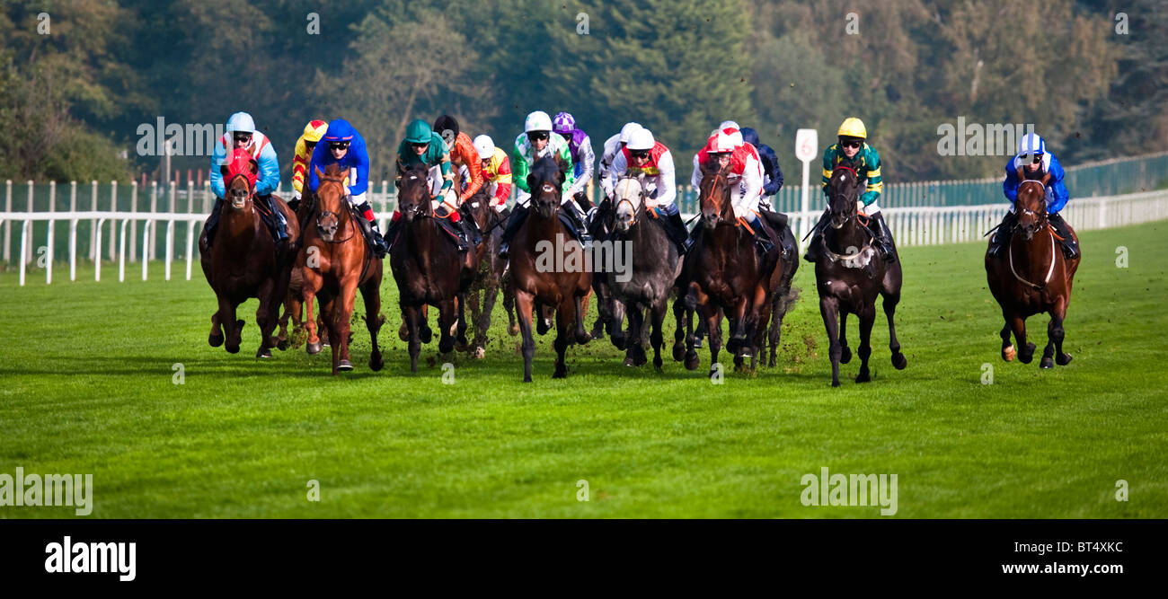 Les courses de chevaux à Ascot, Berkshire, Angleterre. UK. Go Photo Stock