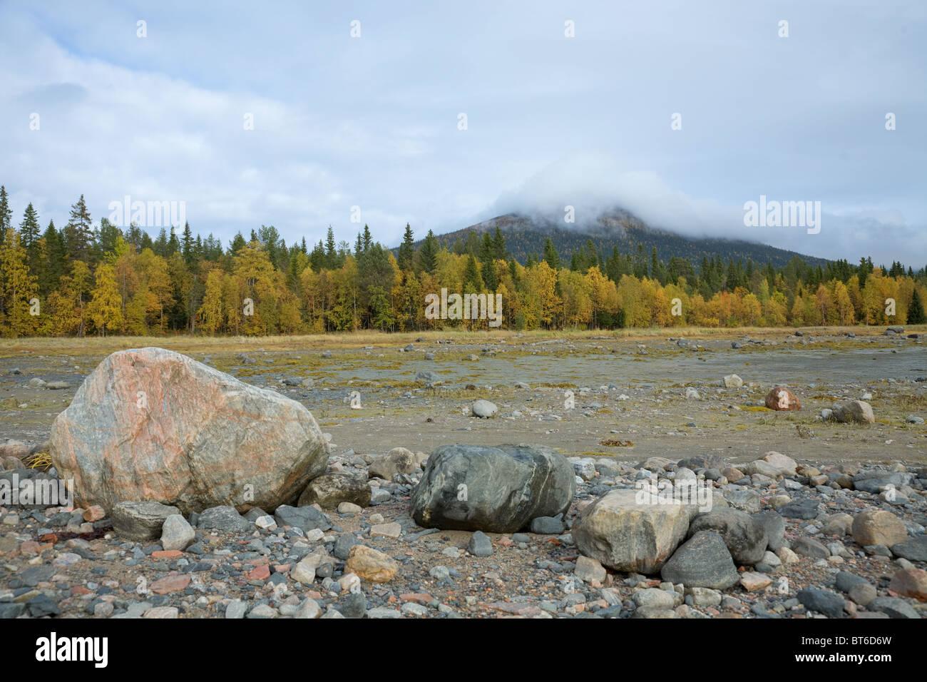Champ de pierre sur la forêt d'automne sur fond de ciel Photo Stock