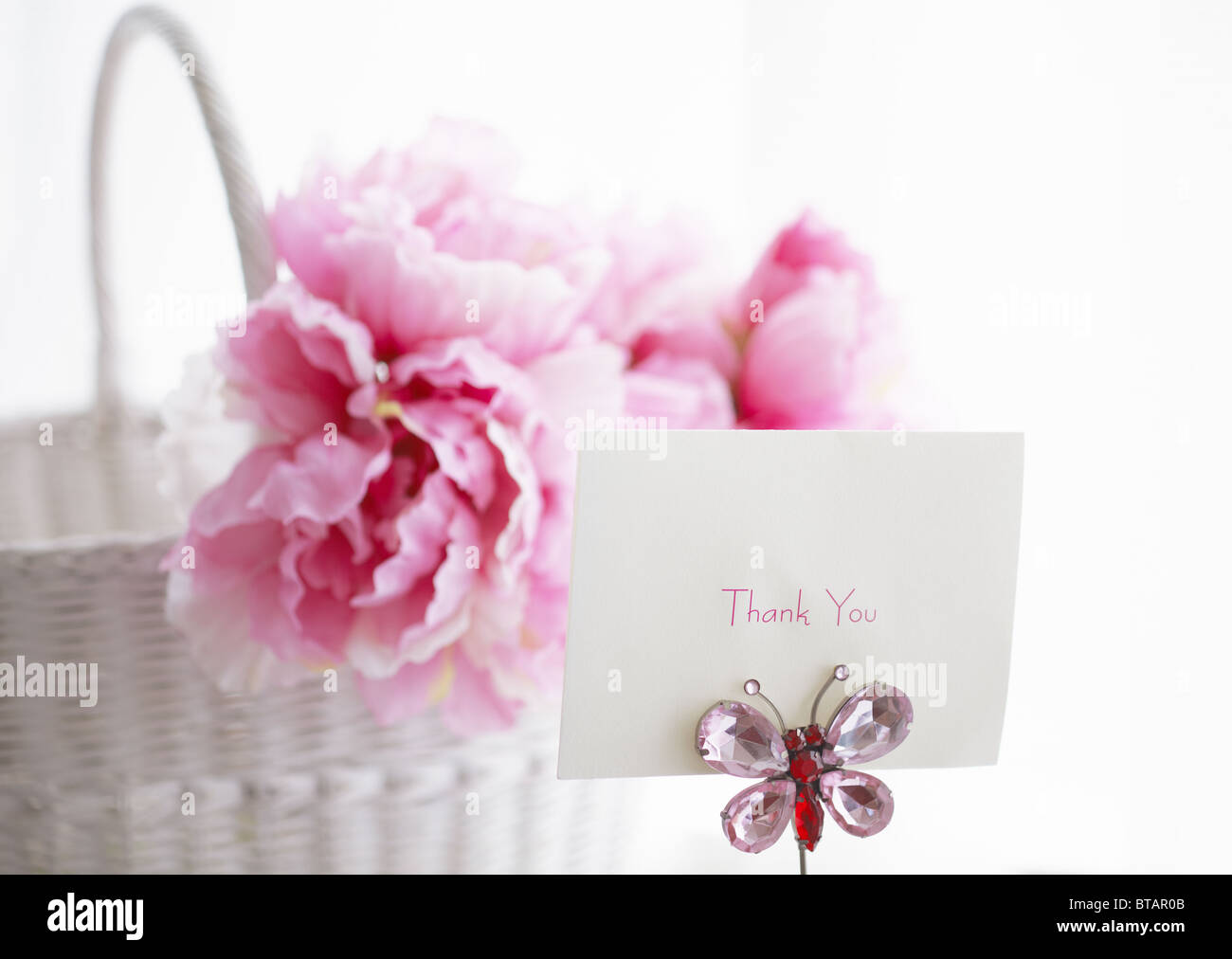 Carte Message et fleurs Photo Stock