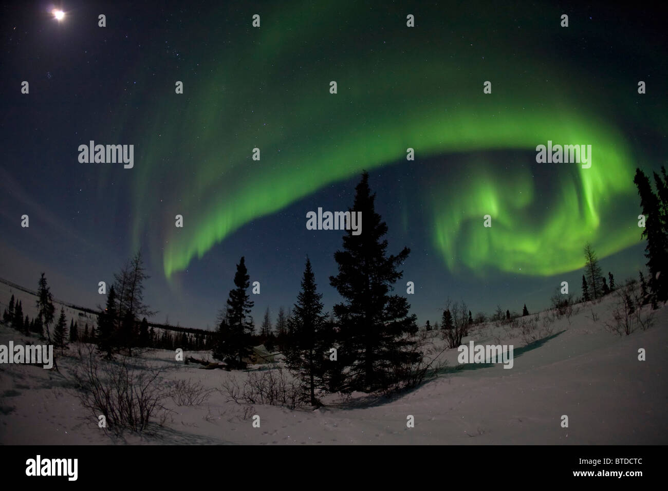 Vue grand angle vert de Northern Lights (aurores boréales) contre un ciel de lune dans le parc national du Photo Stock
