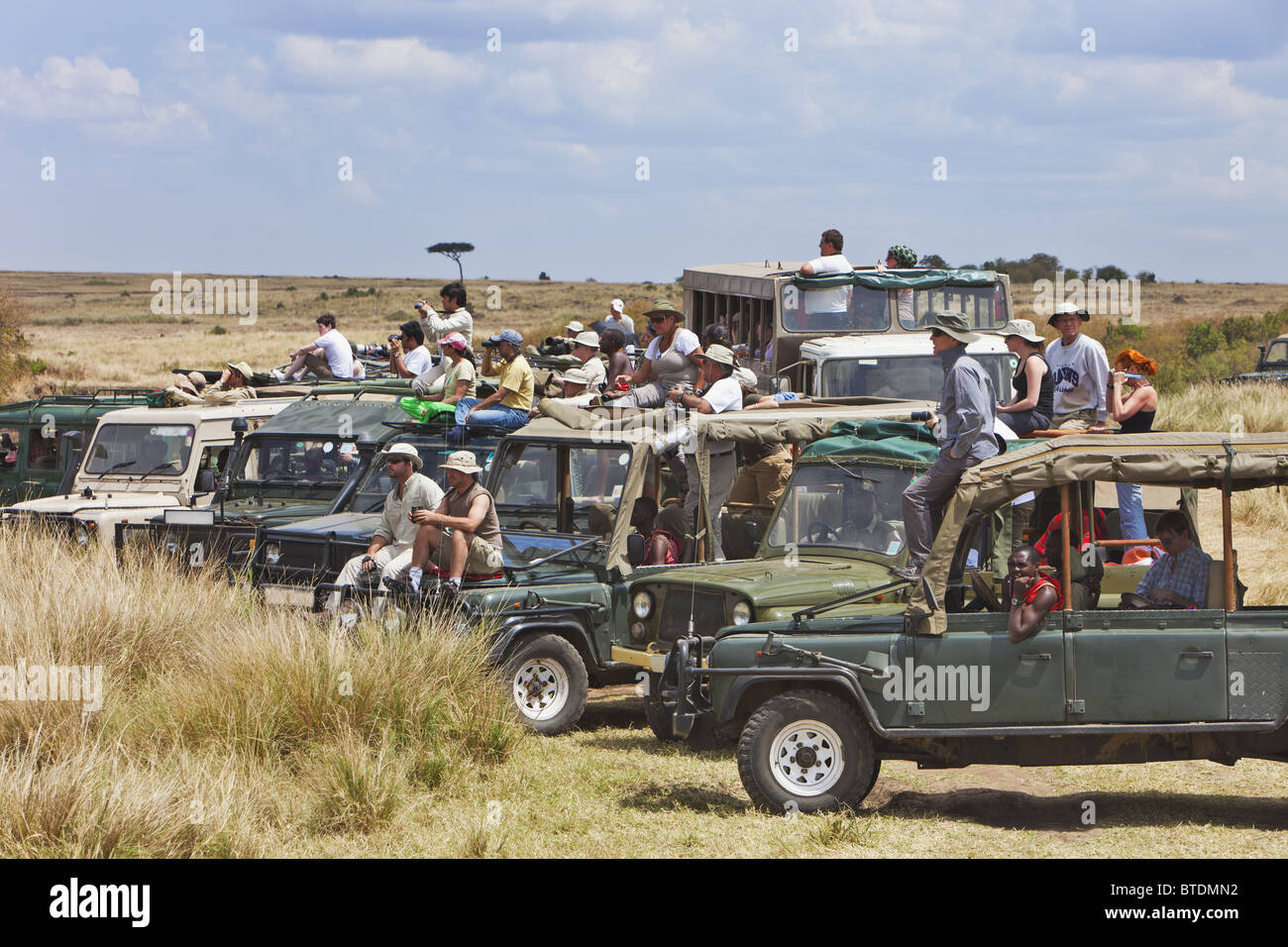 Les touristes à regarder la migration des gnous traversant la rivière Mara.Masai Mara National Reserve. Photo Stock