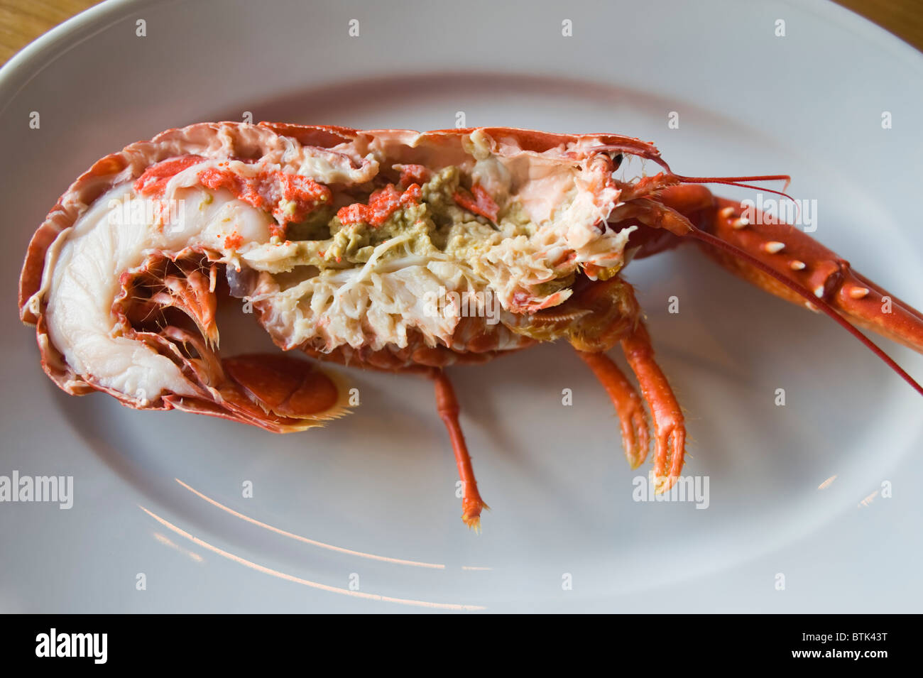 Freshly caught, cuits et prêts à manger du homard femelle à partir de la côte nord-ouest de Photo Stock
