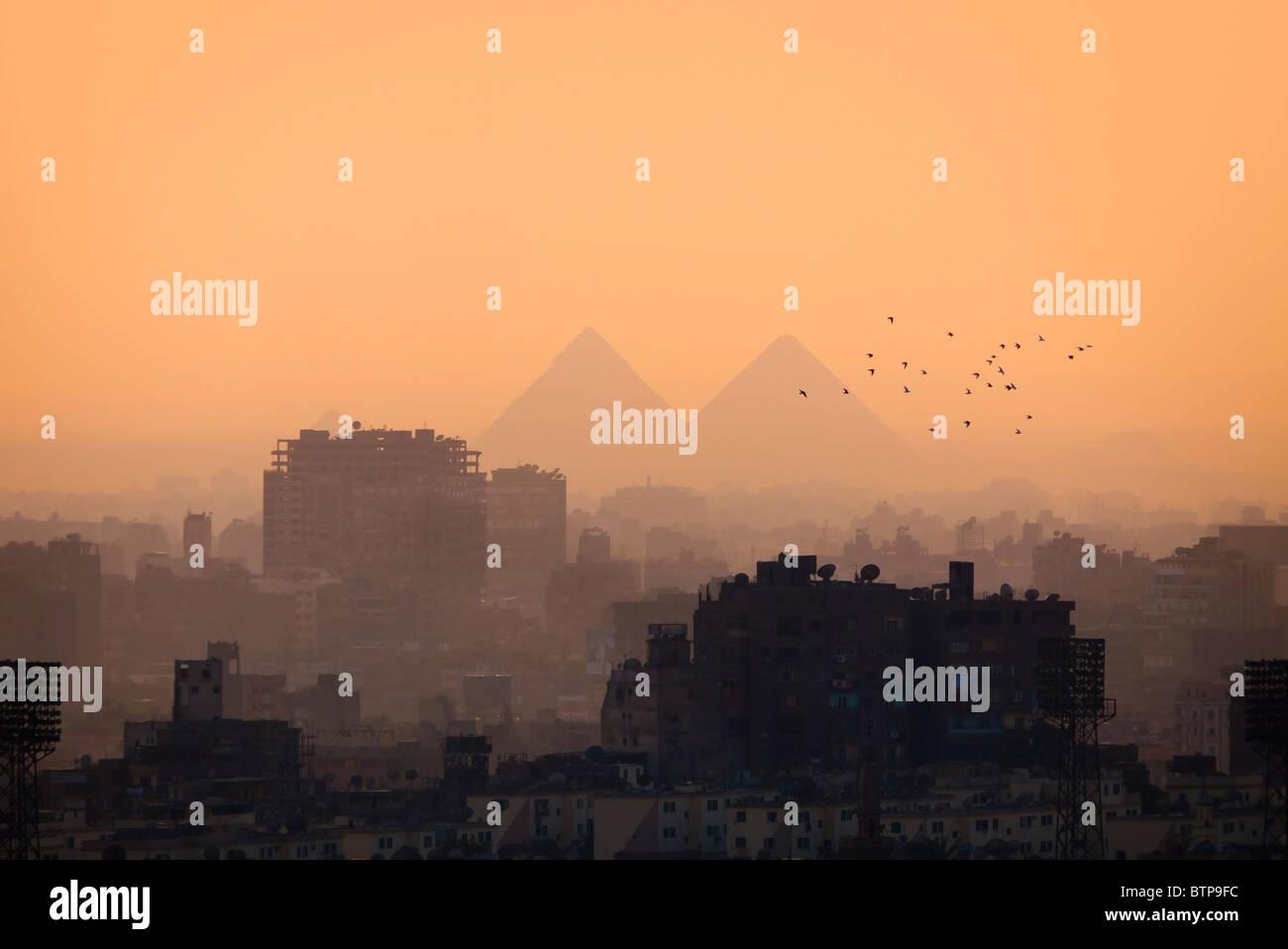 Les toits de la ville du Caire et des Pyramides et certains oiseaux Photo Stock