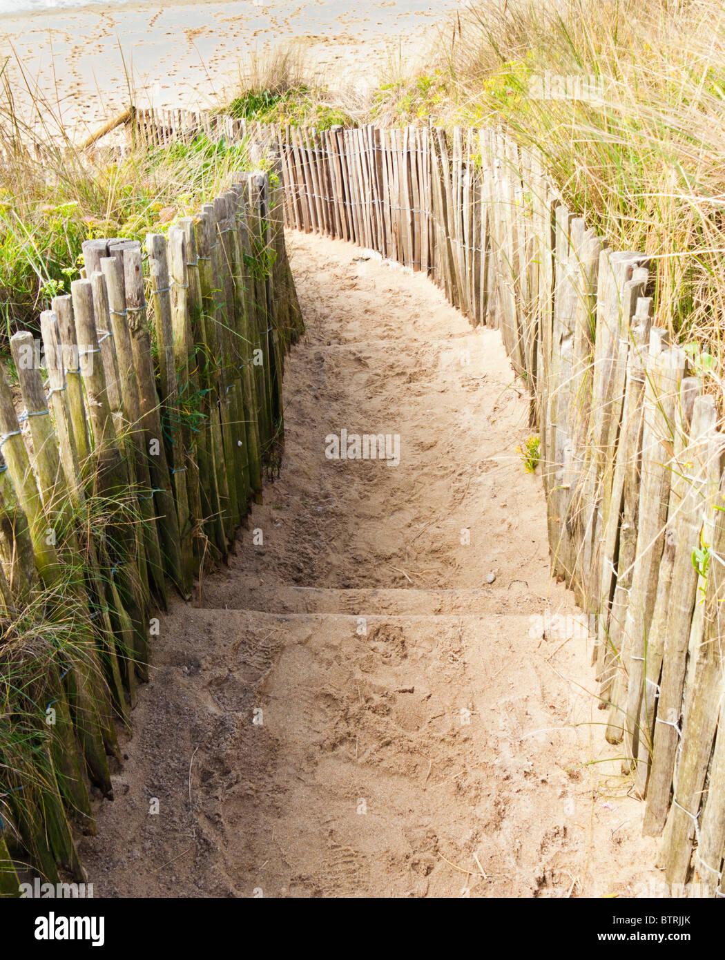 Chemin jusqu'à une plage de sable Photo Stock