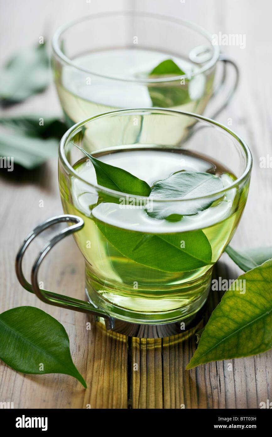Gros plan du thé vert frais, se concentrer sur les feuilles de thé dans l'eau Photo Stock