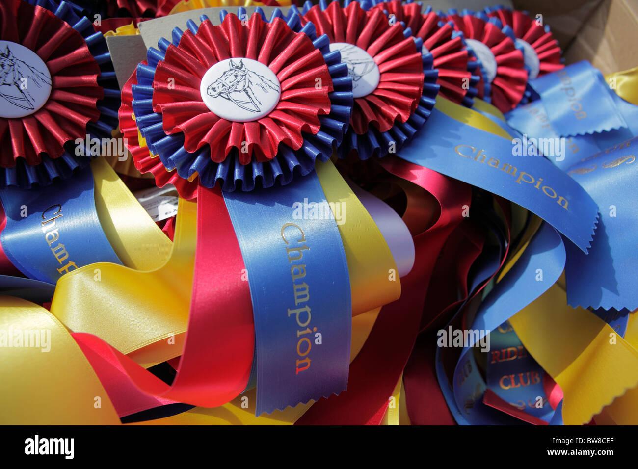 Ruban champion équestre Photo Stock