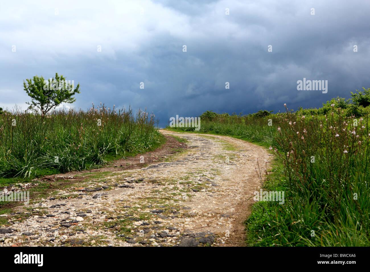 Ruines de l'antique Apollonia, district Fier, Albanie Photo Stock