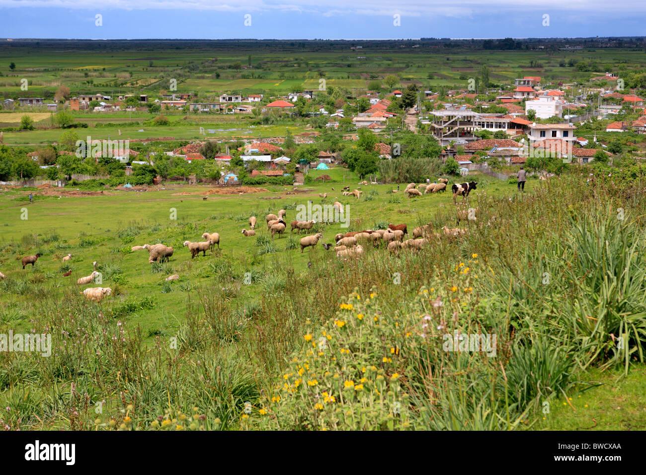 Apollonia, district Fier, Albanie Photo Stock