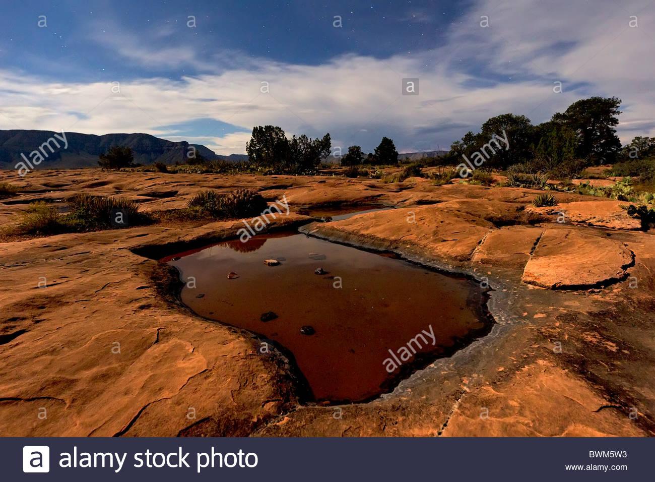 L'eau de pluie s'accumule dans plusieurs trous dans le disque, paysage désertique de grès à Photo Stock