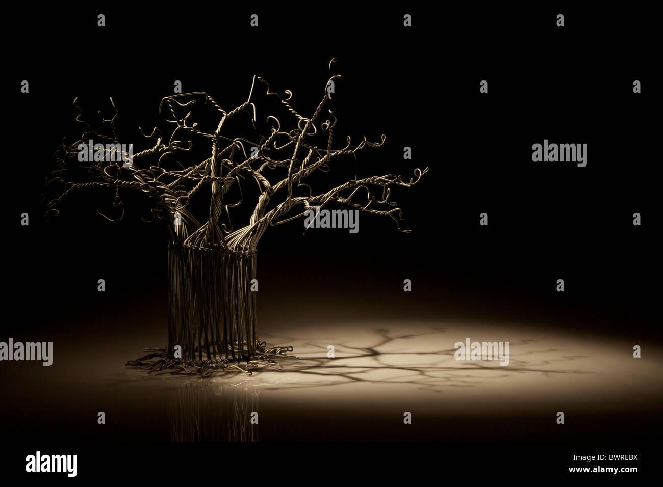 Baobab Tree At Night Photos Baobab Tree At Night Images