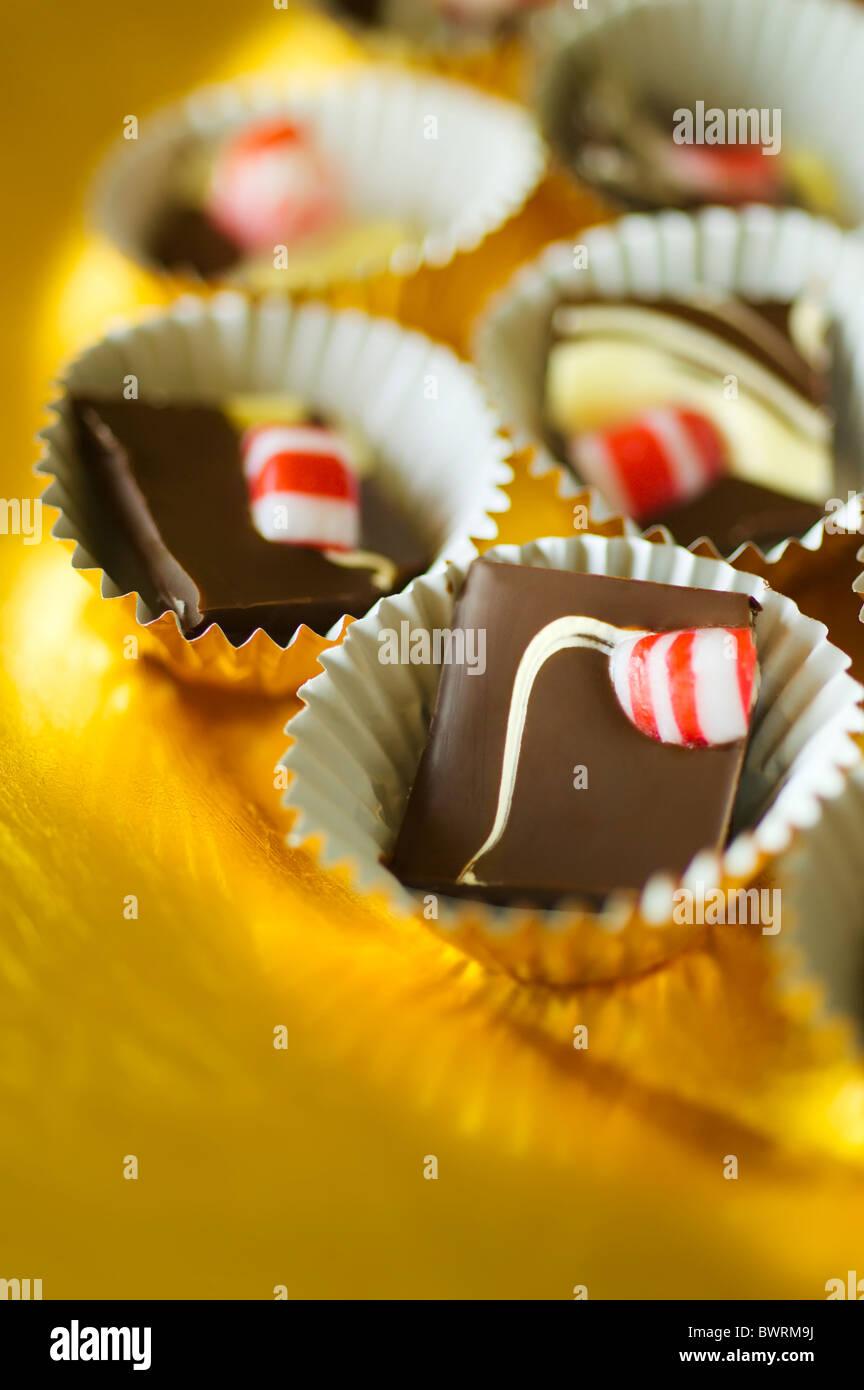 L'écorce de menthe poivrée double chocolat cassé en morceaux et placés à l'intérieur Photo Stock