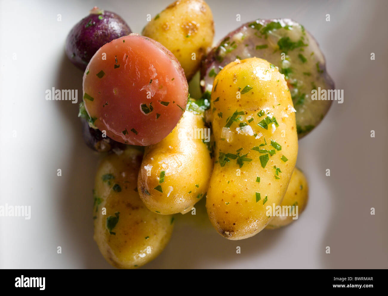Salade de pommes de terre préparées par Masaharu Morimoto Iron Chef du restaurant Morimoto à New Photo Stock