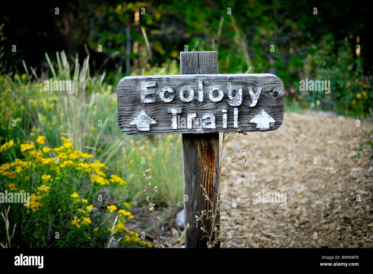 Sentier écologie sign Photo Stock