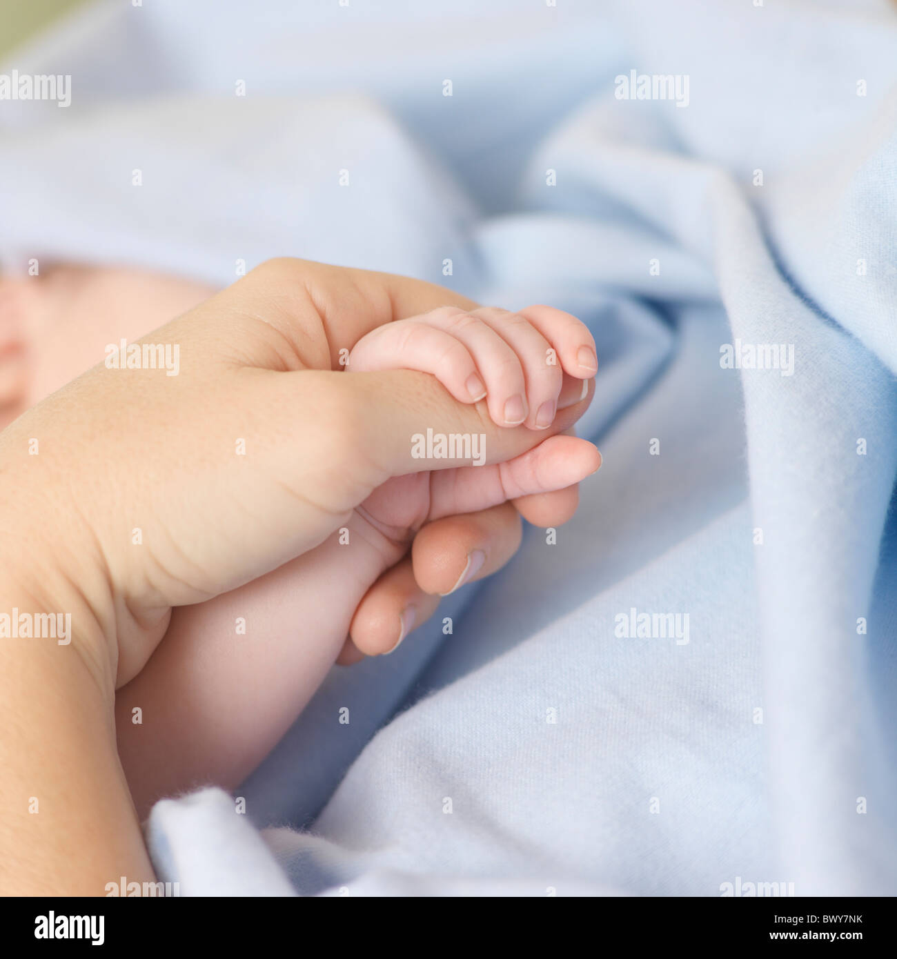 Baby holding Mother's Hand Banque D'Images