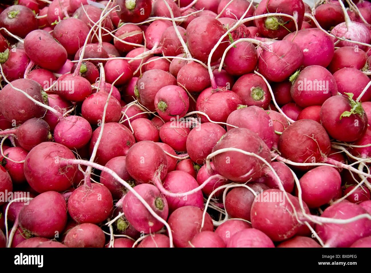 Tas de radis mûrs /Navets à un marché de rue à Istanbul, Turquie Photo Stock