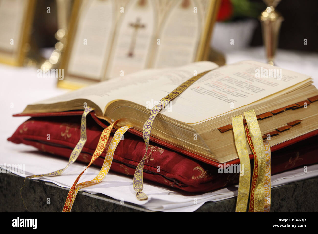 Messe dans la cathédrale de Chartres au cours du pèlerinage catholique traditionaliste, Chartres, Eure-et-Loir, France, Europe Banque D'Images