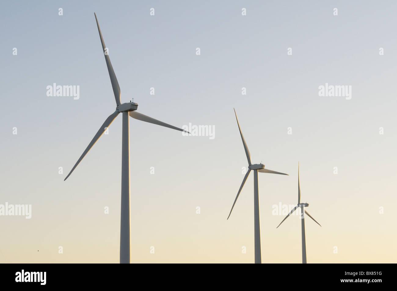 Trois éoliennes à l'aube Photo Stock