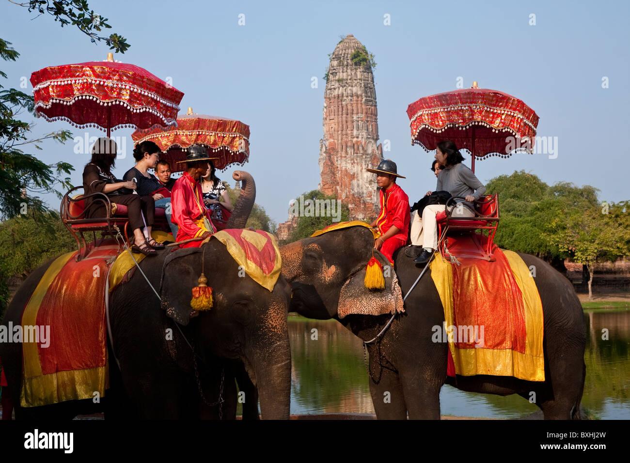 Des promenades touristiques éléphant, Ayutthaya, Thaïlande Photo Stock