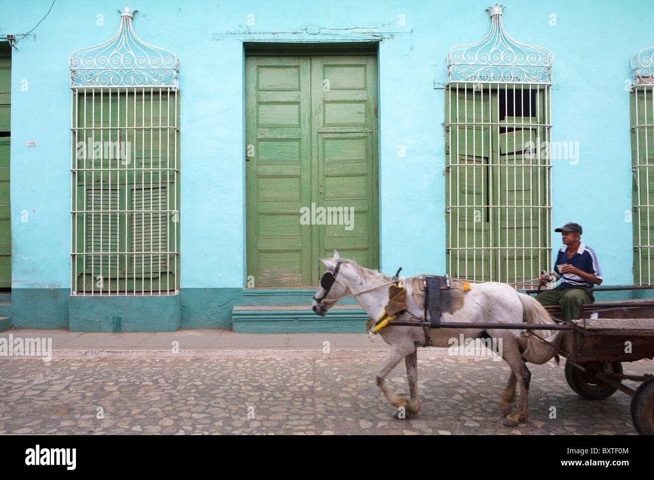 TRINIDAD : CHEVAL ET PANIER Photo Stock
