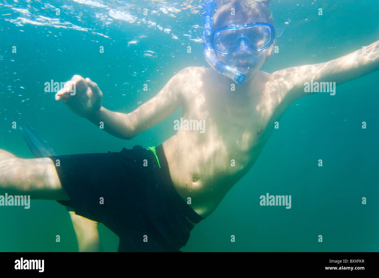 Tuba adolescent dans l'eau de Salto(Saltö) Suède Banque D'Images