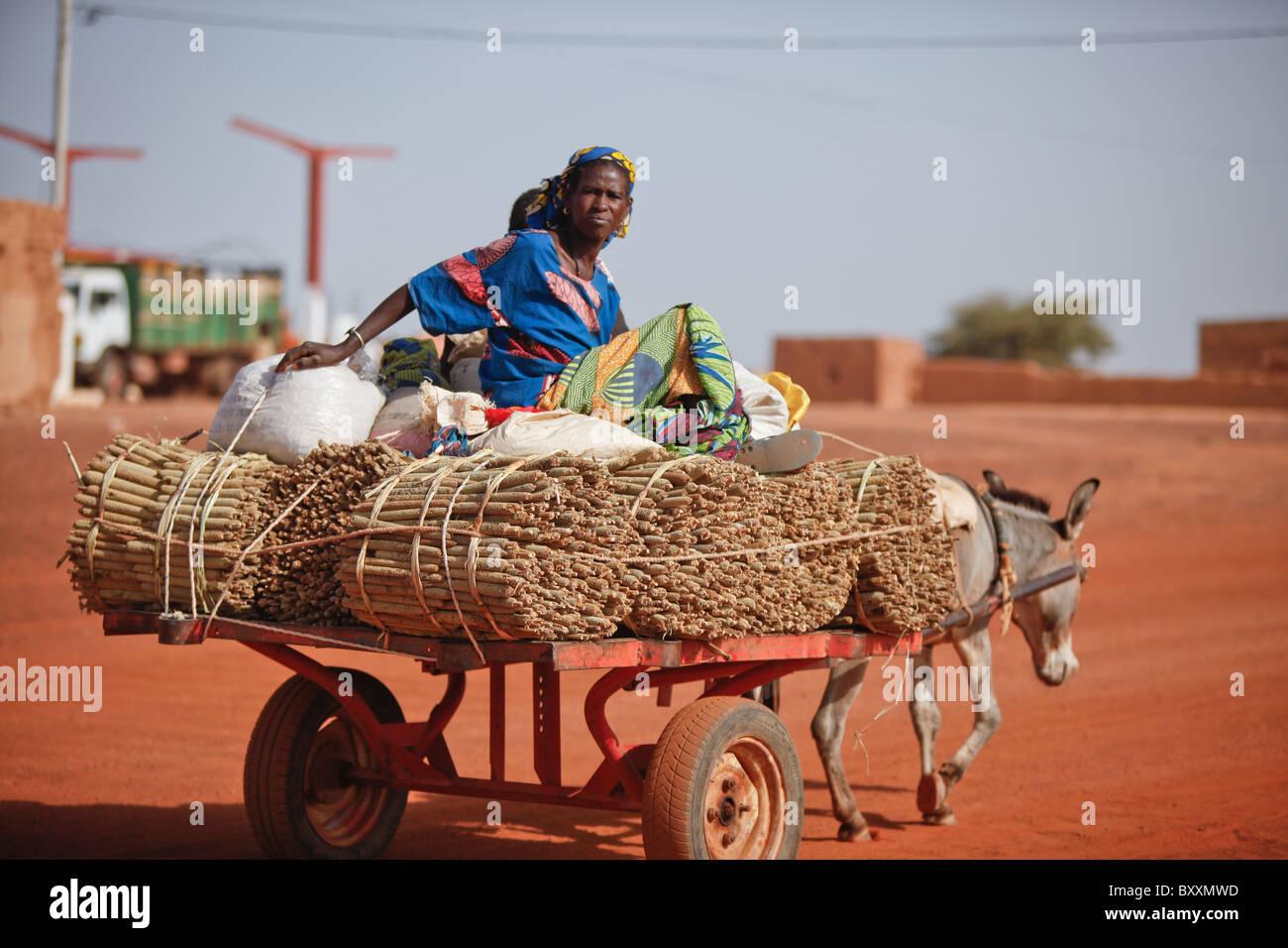 Une famille apporte au marché du mil récoltés par des ânes à Djibo, Burkina Faso. Photo Stock