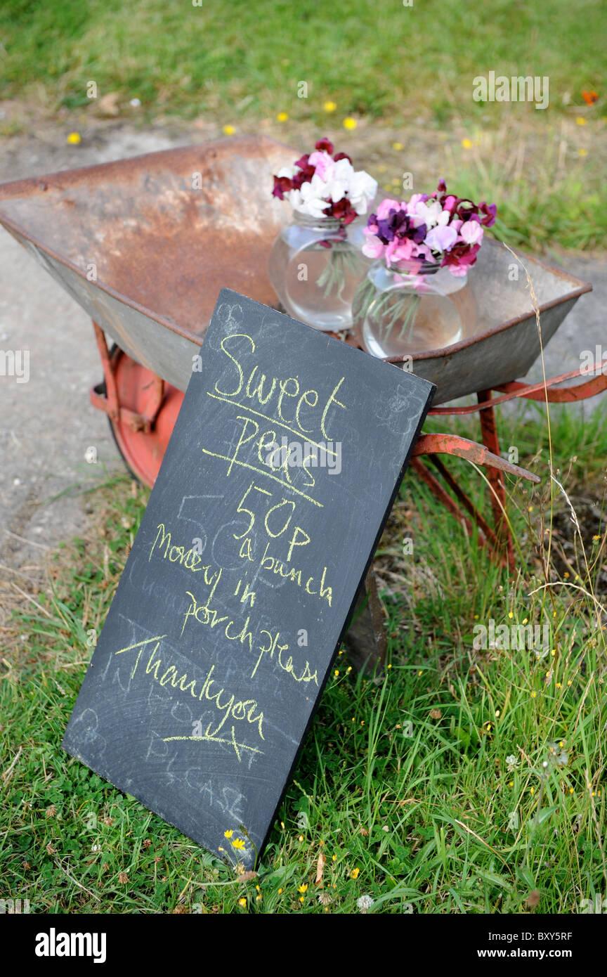 Des tas de pois sucré en vente en dehors d'une petite exploitation Dorset UK Banque D'Images