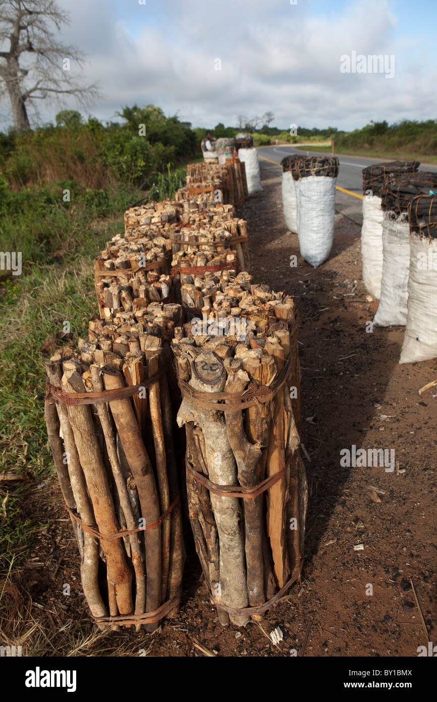 MECATI Forêt, Près de Nampula, MOZAMBIQUE, Mai 2010: sacs de charbon pour la vente par la route. Photo Stock