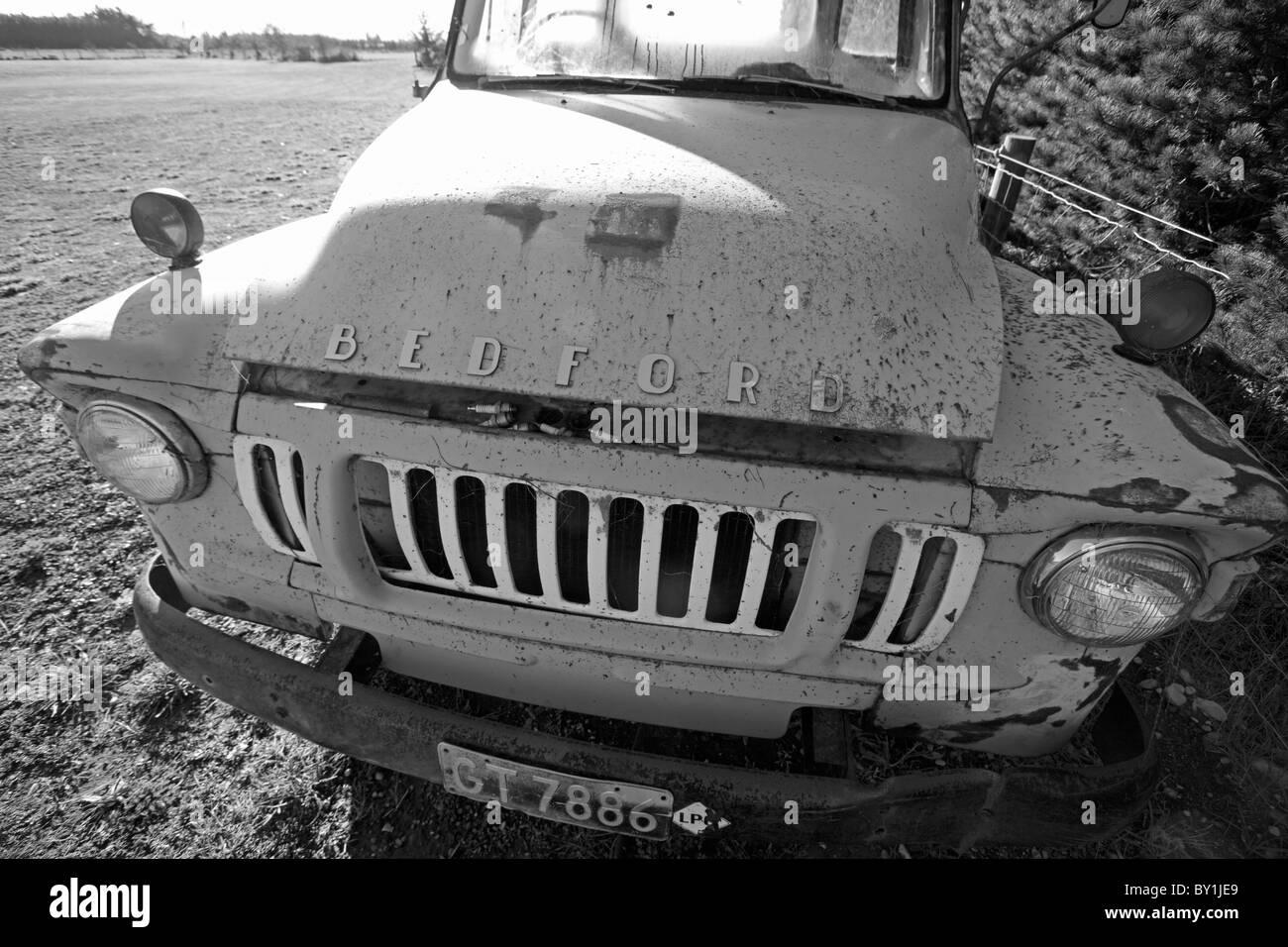 Nouvelle Zélande, île du Sud, les plaines de Canterbury. Un camion Bedford vintage ferme toujours travailler sur Banque D'Images