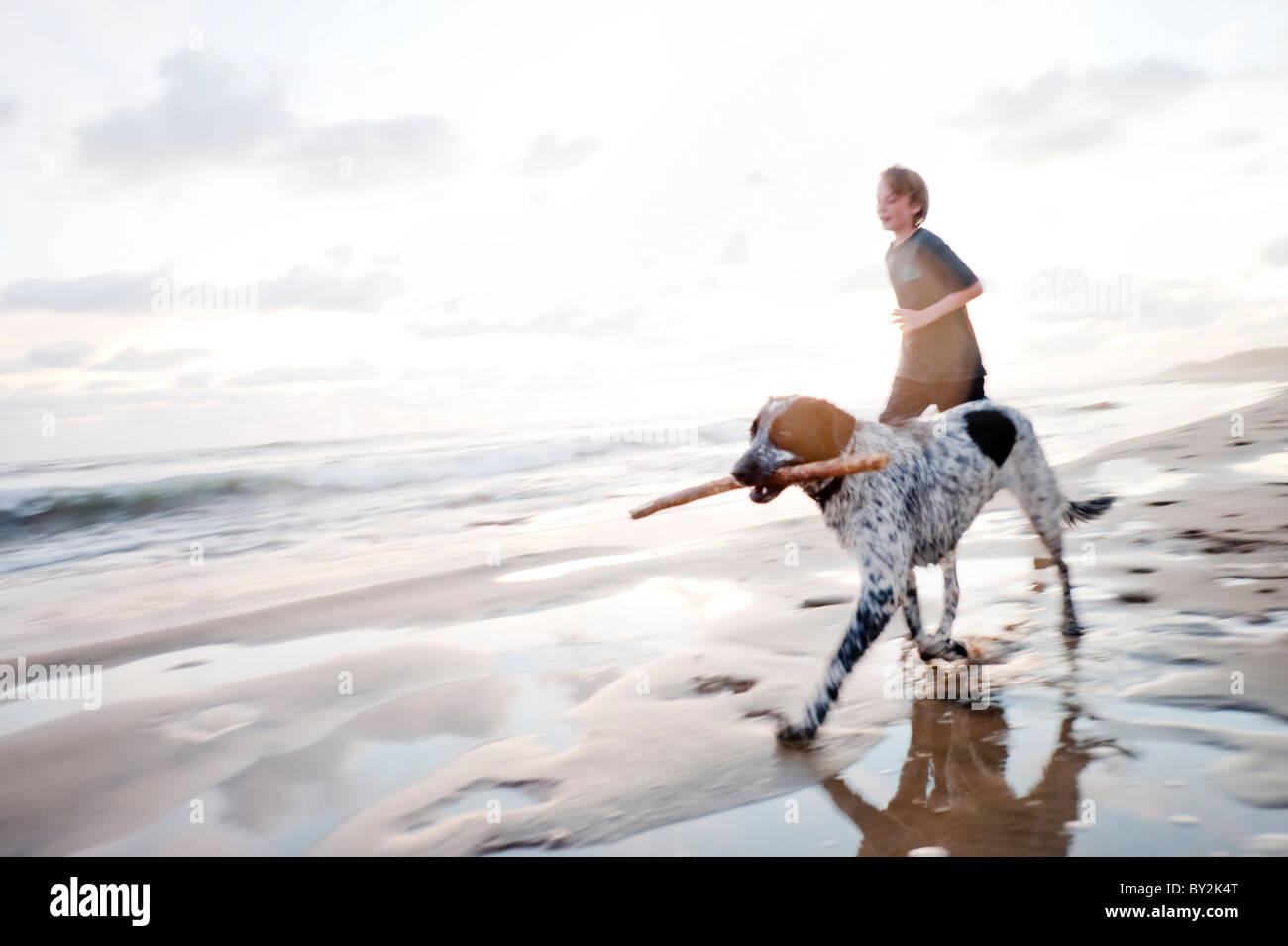 Un jeune garçon et un chien avec un bâton dans sa bouche courir le long d'une plage tranquille, au Photo Stock